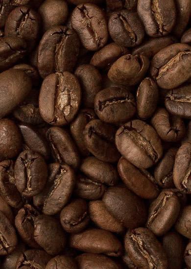 Цена Кофе в зернах Trevi Робуста Индонезия 1 кг