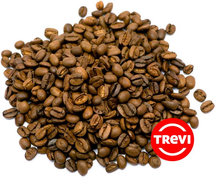 Кофе в зёрнах Trevi Арабика Коста Рика 500 г