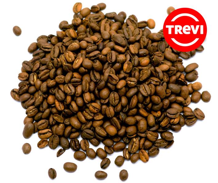 Кофе в зёрнах Trevi Арабика Эфиопия Джимма 500 г
