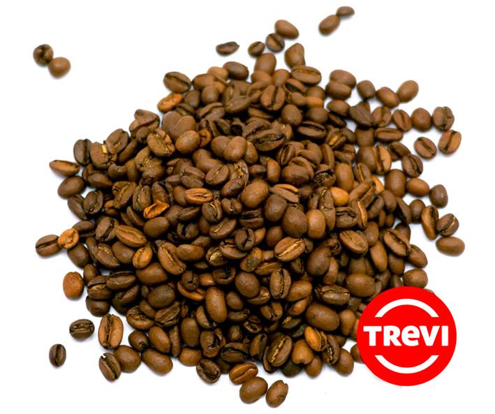 Кофе в зёрнах Trevi Арабика Эфиопия Сидамо 500 г