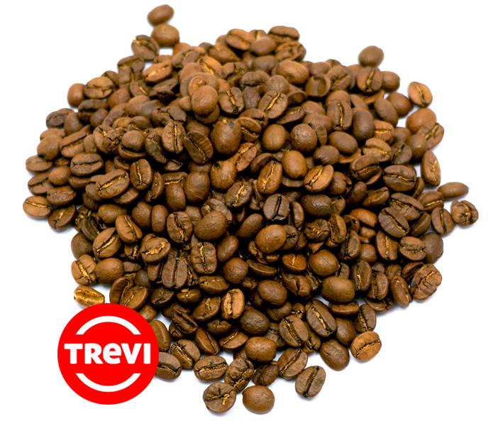 Цена Кофе в зёрнах Trevi Арабика Гондурас Марагоджип 1 кг