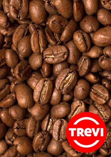 Кофе в зёрнах Trevi Арабика Гондурас 500 г