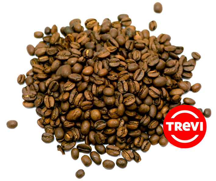Кофе в зёрнах Trevi Арабика Индонезия Мандхелинг 500 г