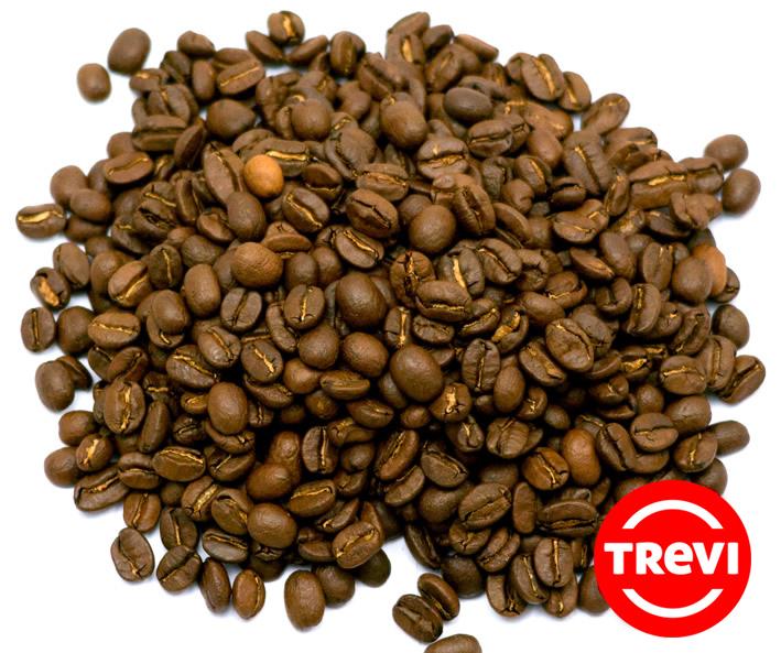 Кофе в зёрнах Trevi Арабика Никарагуа 500 г