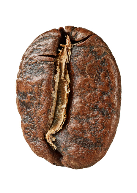 Кофе в зёрнах Арабика Кения Джосра 500 г