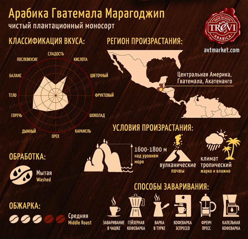 Кофе в зёрнах Trevi Арабика Гватемала Марагоджип 500 г