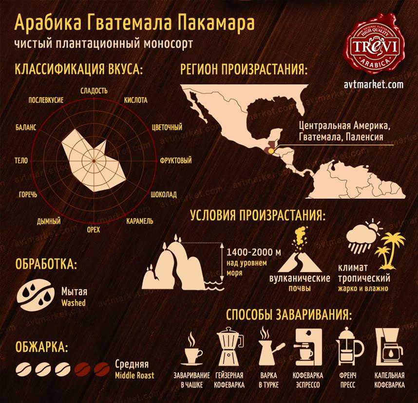 Кофе в зёрнах Trevi Арабика Гватемала Пакамара 1 кг