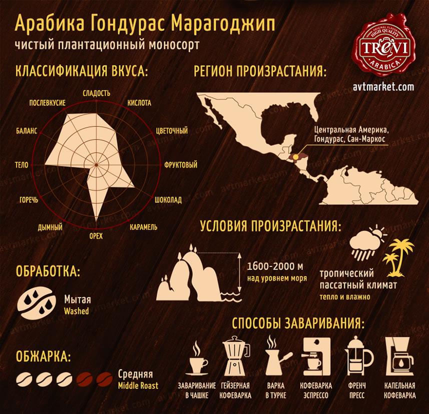 Стоимость Кофе в зёрнах Trevi Арабика Гондурас Марагоджип 1 кг