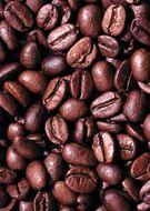 Кофе в зёрнах Trevi Робуста Уганда 500 г