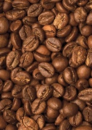 Кофе в зёрнах Trevi Робуста Индия Парчмент 500 г