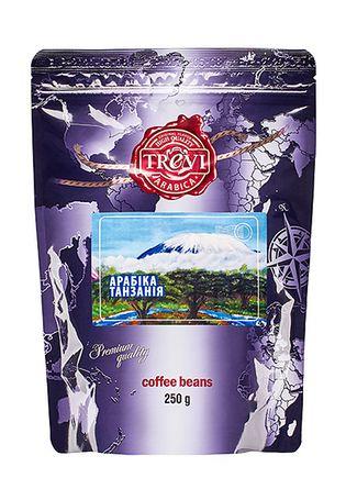 Кофе в зёрнах Trevi Арабика Танзания 250 г