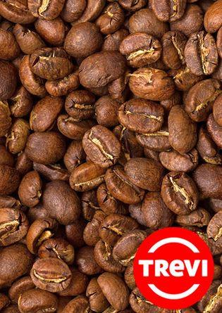 Цена Кофе в зёрнах Trevi Арабика Бурунди 500 г