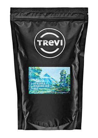 Кофе в зёрнах Trevi Арабика Индонезия Ява 1 кг