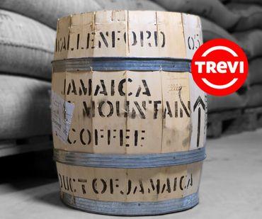 Кофе в зёрнах Trevi Арабика Blue Mountain 100 г