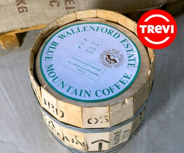 Цена Кофе в зёрнах Trevi Арабика Blue Mountain 100 г