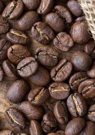 Стоимость Кофе в зёрнах Trevi Арабика Кения Джосра 500 г