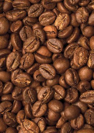 Цена Кофе в зёрнах Trevi Робуста Индия Парчмент 1 кг
