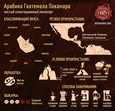 Стоимость Кофе в зёрнах Trevi Арабика Гватемала Пакамара 500 г
