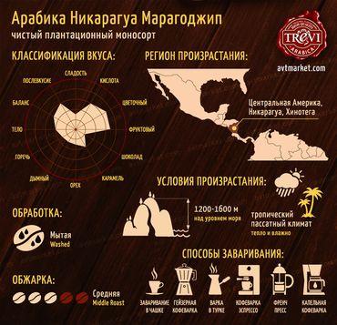 Стоимость Кофе в зёрнах Trevi Арабика Никарагуа Марагоджип 500 г